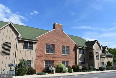 Mercersburg Single Family Home For Sale: 14200 Northern Lights Drive #32