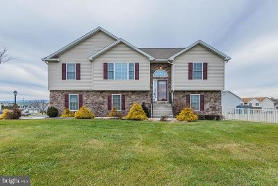 Shippensburg Single Family Home For Sale: 200 Grayson Circle