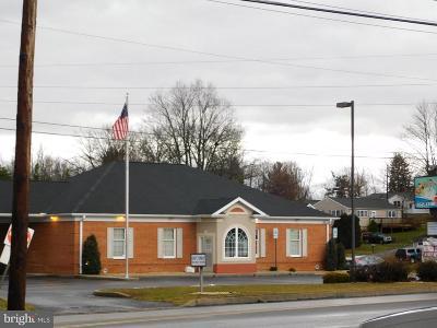 Waynesboro Commercial For Sale: 11050 Buchanan Trail E