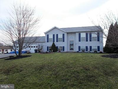 Greencastle Single Family Home For Sale: 8935 Kline Drive
