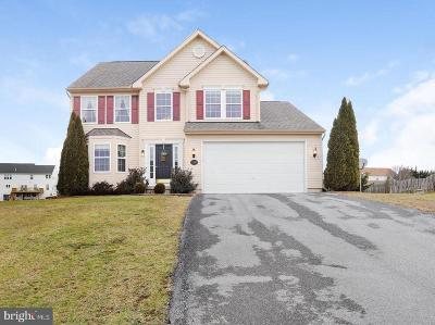Mercersburg Single Family Home For Sale: 12547 Licking Creek Court