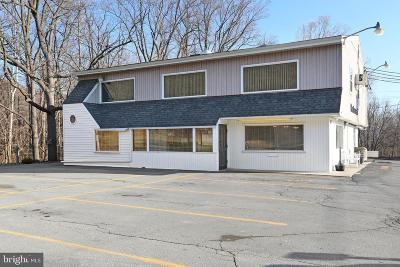 Mercersburg Commercial For Sale: Buchanan Trail