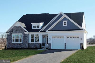 Franklin County Single Family Home For Sale: Honey Run Lane #ASHLAND