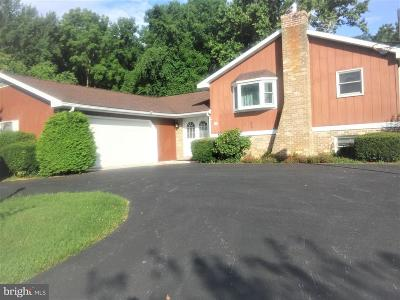 Shippensburg Single Family Home For Sale: 9825 Forest Ridge Road