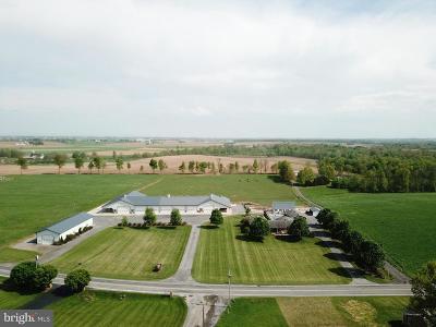 Mercersburg Single Family Home For Sale: 10078 Church Hill Road