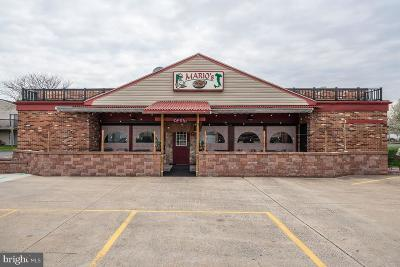 Franklin County Commercial For Sale: 831 Wayne Avenue