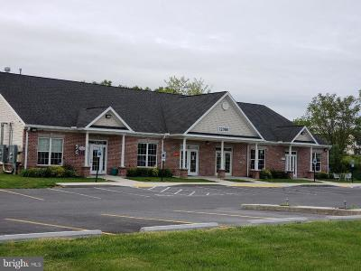 Franklin County Commercial For Sale: 12080 Skyhawk Drive