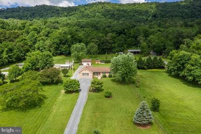 Mercersburg Single Family Home For Sale: 3007 Mountain Road