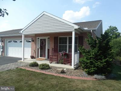 Waynesboro Single Family Home For Sale: 732 Golden Spring Drive