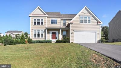 Waynesboro Single Family Home For Sale: 11537 Buhrman Drive W