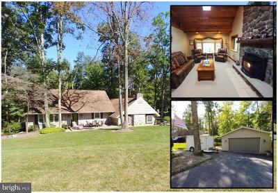 Franklin County Single Family Home For Sale: 111 Mount Union Road