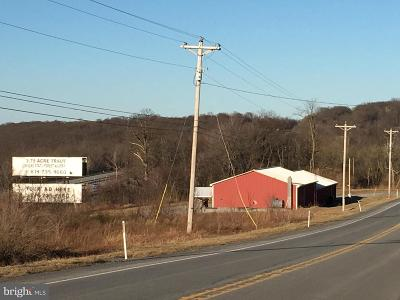 Fulton County Commercial For Sale: 803 Lincoln Highway