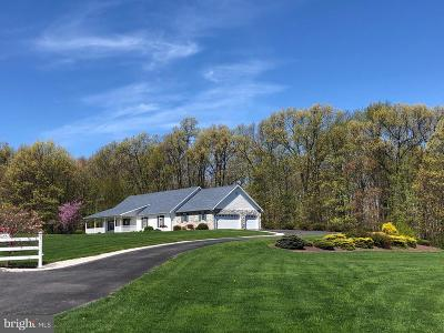Fulton County Single Family Home For Sale: 11145 Waterfall Road