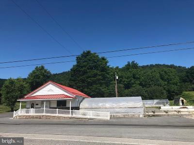 Fulton County Commercial For Sale: 135 Knobsville Rd