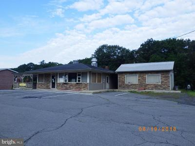 Fulton County Commercial For Sale: 23179 Great Cove Rd