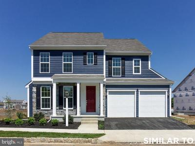 Lancaster County Single Family Home For Sale: 1214 Edgemoor Drive