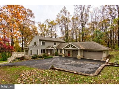 Lancaster County Single Family Home For Sale: 10 Hess Circle