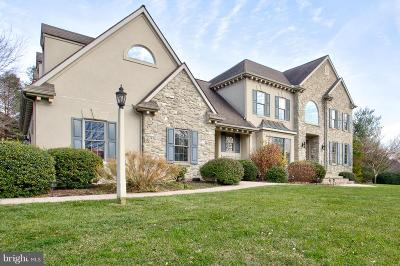 Lititz PA Single Family Home For Sale: $749,900