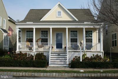 Mount Joy Single Family Home For Sale: 1059 Reagan Street