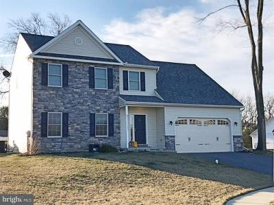 Elizabethtown Single Family Home For Sale: 117 Fawn Drive