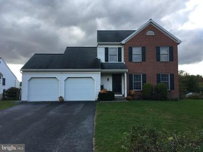 New Holland Single Family Home For Sale: 104 Willow Ridge