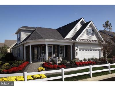 Lititz Single Family Home For Sale: 268 Valor Drive