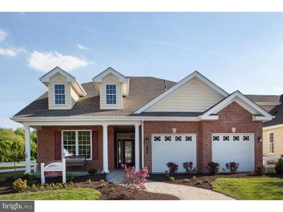 Lititz Single Family Home For Sale: 267 Valor Drive