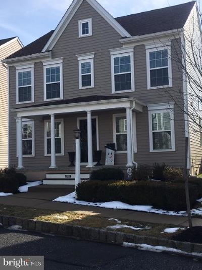Mount Joy Single Family Home For Sale: 203 Alden Street