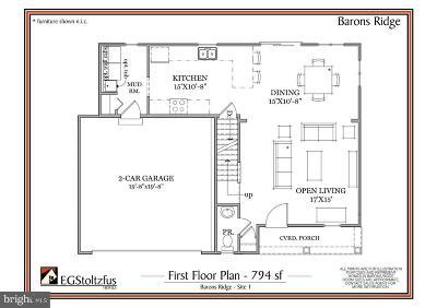 Manheim Single Family Home For Sale: 601 Hamaker