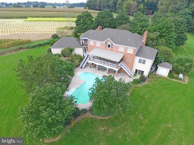 Lancaster County Single Family Home For Sale: 938 Log Cabin Road