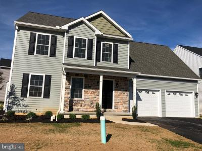 New Holland Single Family Home For Sale: 211 Jared Way #LOT 54