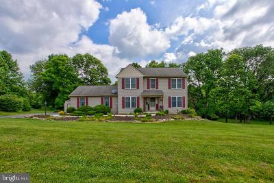 Willow Street Single Family Home For Sale: 13 Apache Lane