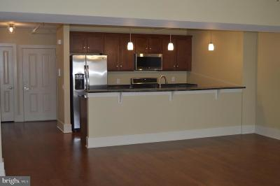 Lancaster PA Condo For Sale: $381,000