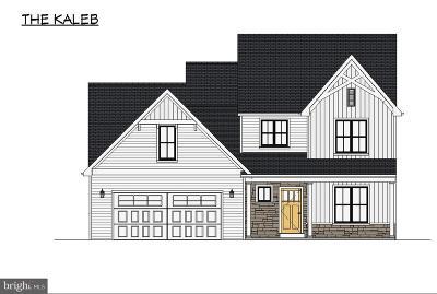 Ephrata Single Family Home For Sale: 57 Lake View Road #8