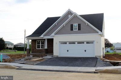 Single Family Home For Sale: 8 Verbena Drive #9