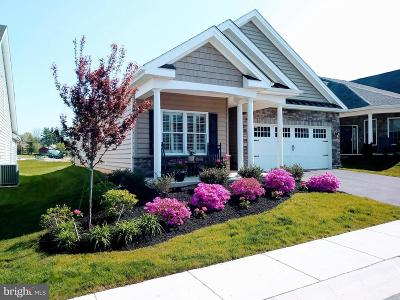 Lancaster County Single Family Home For Sale: 488 Resolution Drive