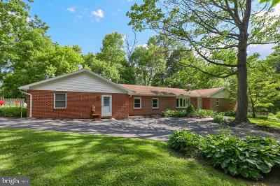 Lancaster Single Family Home For Sale: 245 Marticville Road