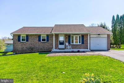 Lancaster County Single Family Home For Sale: 20 Allen Road