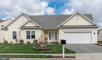 Lancaster County Single Family Home For Sale: 235 Greystone Lane