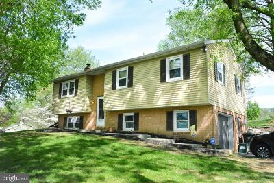 Willow Street Single Family Home For Sale: 410 Radcliff Road
