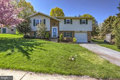 Lititz Single Family Home For Sale: 806 S Cedar Street