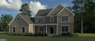 Single Family Home For Sale: 554 E Delp Road