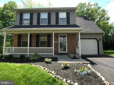 Marietta Single Family Home For Sale: 317 Amanda Court