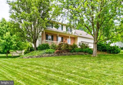 Columbia Single Family Home For Sale: 488 Lancer Drive