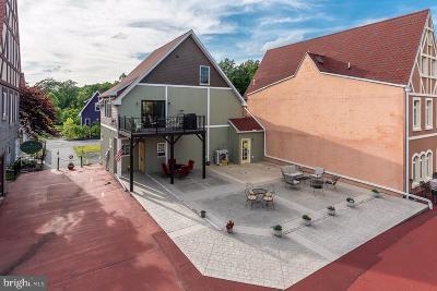 Reinholds Single Family Home For Sale: 10 Market Plaza