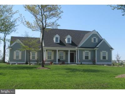 Lancaster County Single Family Home For Sale: Green Lane