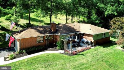 Willow Street Single Family Home For Sale: 128 Mount Hope School Road