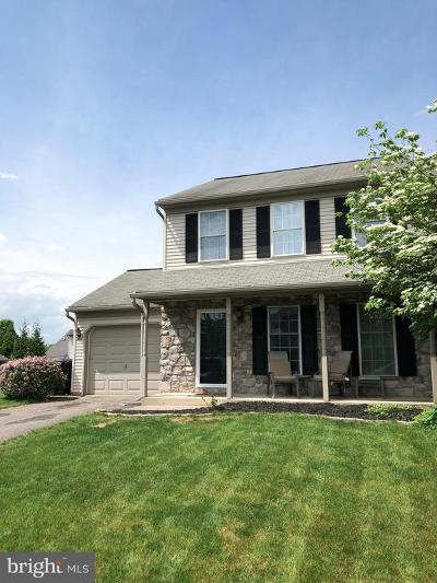 Lancaster County Single Family Home For Sale: 4115 Green Park Drive
