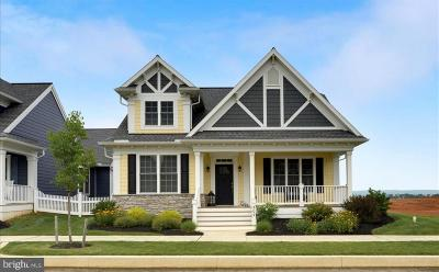 Ephrata Single Family Home For Sale: 309 Constitution Drive