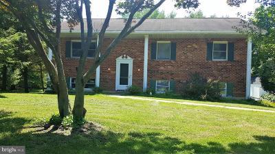 Single Family Home For Sale: 109 Catalpa Lane